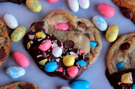 big bears wife Chocolate-Dipped-Robin-Egg-Cookies-13